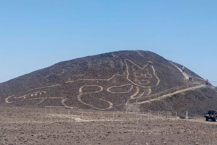 Katachtige figuur ontdekt op een heuvelwand in Nazca, Peru.