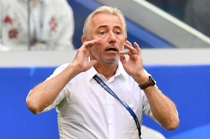 Bert van Marwijk als bondscoach van Australië tijdens het WK 2018 in Rusland.
