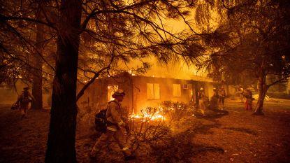 VIDEO. Wind wakkert bosbranden in Californië verder aan, nog steeds honderden vermisten