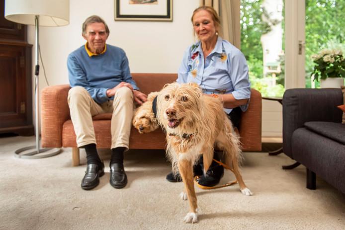 Driepotige hond Rosa, gered dankzij Mens Dier Nood, met op de achtergrond Mariëtte Laugeman en Toon de Boer.