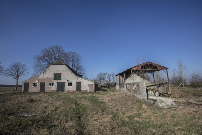 De vervallen boerderij aan de Jodenpeeldreef 9 in De Rips, waar varkensboer Heijligers-Van Gennip graag wil uitbreiden.