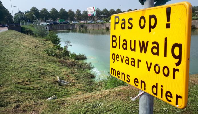 Het Zwaaigatconcert in Roosendaal is verplaatst vanwege blauwalg in het water, bord bij het Zwaaigat waarschuwt voor het gevaar.