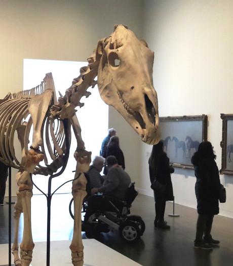 Beroemdste 18de-eeuwse Britse renpaard komt naar Den Haag