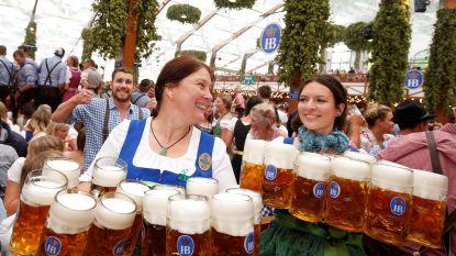 Waarom we ook in België steeds vaker Oktoberfest vieren