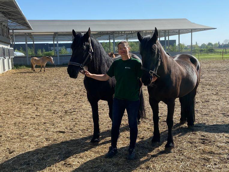 """Leerkracht Sofie Stessel: """"De leerlingen vragen hoe het met de dieren gaat"""""""