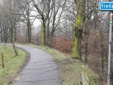 Elshoutse Zeedijk: bomen kappen, hobbels weghalen, asfalt aanpakken; allemaal voor het fietscomfort