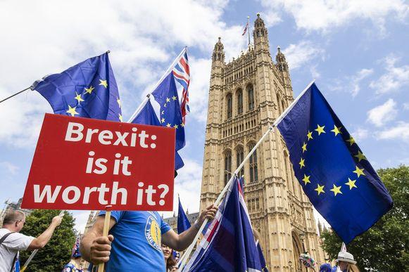 De gemoederen rond de Brexit lopen niet enkel in de UK hoog op. Ook West-Vlaanderen dreigt zwaar getroffen te worden.