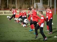 FC Twente en Heracles krijgen evenveel te zeggen over gezamenlijke jeugdopleiding