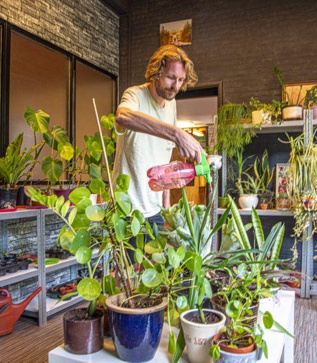 Zwols plantenasiel heropent met bingo voor de grootste planten