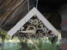 Jubilerend IVN Heeze-Leende opent insectenhotels