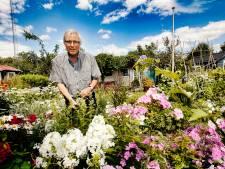 Acht jaar wachten om een volkstuin in regio Utrecht te bemachtigen: 'Vraag naar tuinen is ontploft'