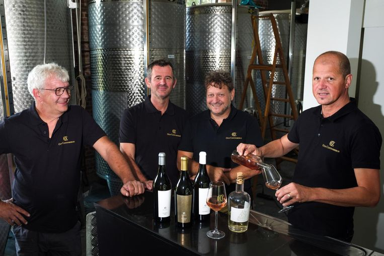 De wijnboeren Pol Corluy, Johan Meulepas, Peter Melders en Lode Van den Brande.