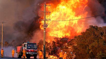 Australië vreest voor extreme bosbranden