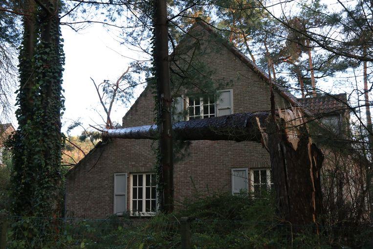 Schade van de storm van 10 maart in Waasmunster.