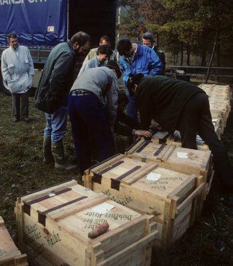 Hoe de 'DDR-bever' 30 jaar geleden naar de Biesbosch kwam