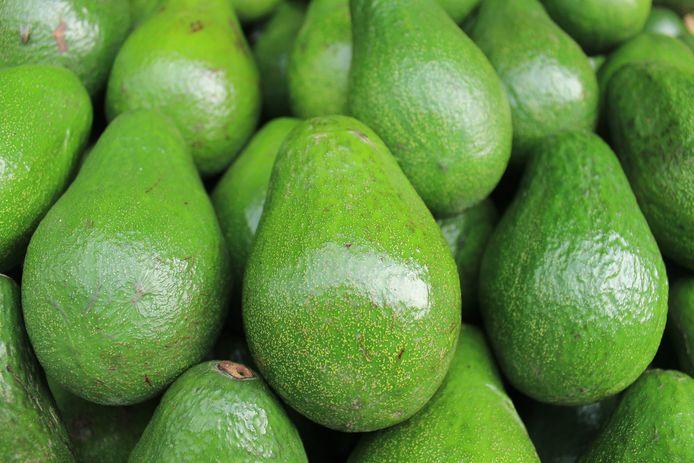 De avocado's waren bestemd voor een bedrijf in Maasdijk dat volgens het OM vermoedelijk niets te maken heeft met de drugssmokkel.