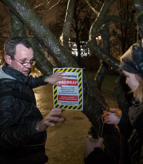 Milieu-activisten geven bomen in Vondelpark kapmerk
