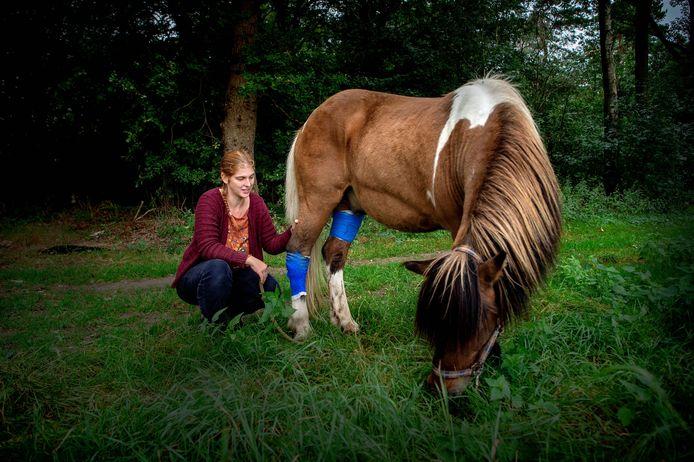 Temba Burrill en haar verwonde paard Segull.