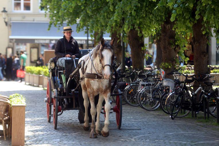 Een paardenkoets op het Simon Stevinplein in Brugge.
