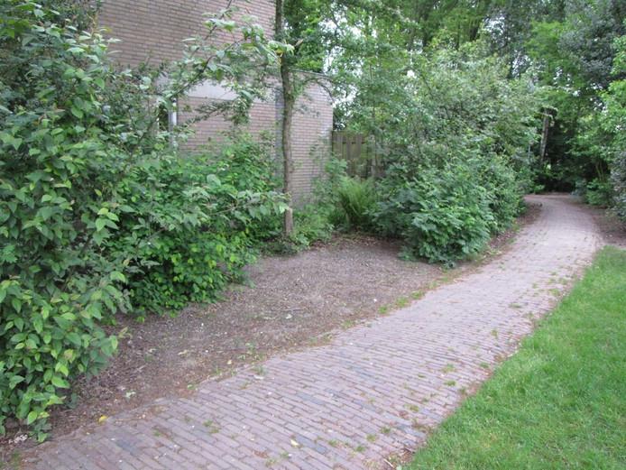 Zo lag het hierboven afgebeelde stukje openbaar groen in Loon op Zand er jaren bij.