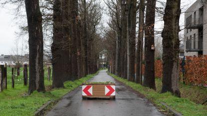 Knip Diepenbroek definitief, ook knelpunten in wijk worden aangepakt
