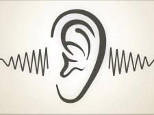 Etten-Leurenaar voelt zich niet gehoord: hoe goed kan de gemeente eigenlijk luisteren?