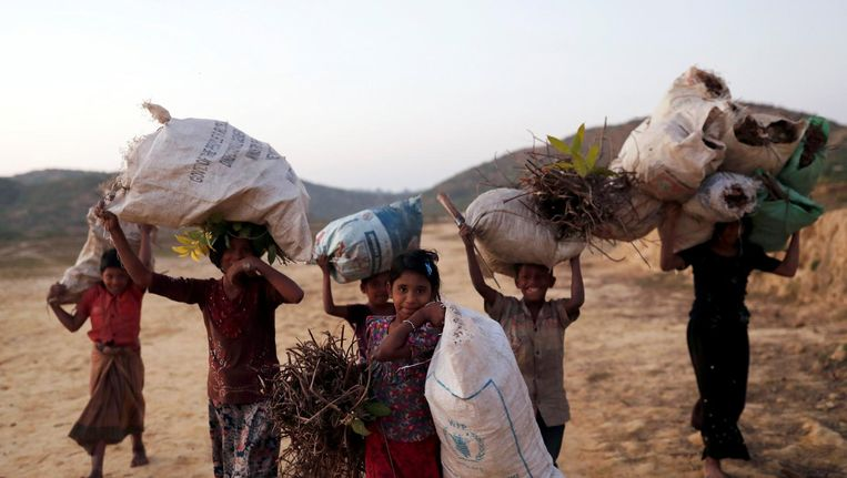 Rohingya vluchtelingenkinderen dragen hout in het Palong Khali-vluchtelingenkamp in Bangladesh Beeld reuters