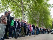 Kosten van redden bomen Boschveldweg mogelijk stuk lager, B&W stuurt brief aan minister