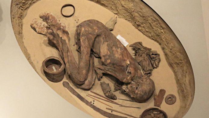 Une momie exposée au musée égyptien de Turin et datant de 3700-3500 avant J.C. vient perturber l'histoire.
