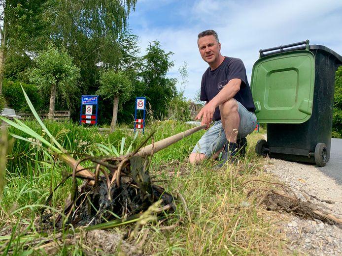 Arie Korevaar uit Ottoland haalt de wortels van de 'liezen' uit de sloot zodat kinderen in de sloot kunnen vissen.