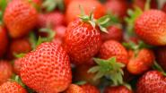 Dieven blijken aardbeienliefhebbers: ze stelen confituur en bavarois uit automaat