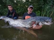 Monstervis gevangen in Enschede: Nederlands record verbroken