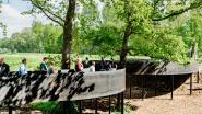 Nieuw Demerbaken: wandelen tussen eikenkruinen
