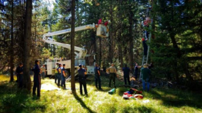 Eddie Voelker werd, na twee dagen ondersteboven in een boom te hebben gehangen, met een hoogwerker gered.