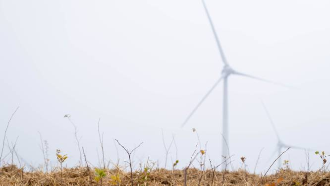 """Twee nieuwe aanvragen voor windturbines in Puurs-Sint-Amands: """"Om moedeloos van te worden"""""""