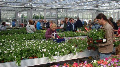 Openschooldag en Lenteverkoop op Tuinbouwschool Melle