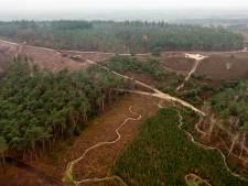 Bomenkap Lemelerberg gaat door, omdat het volgens Overijssel nodig is