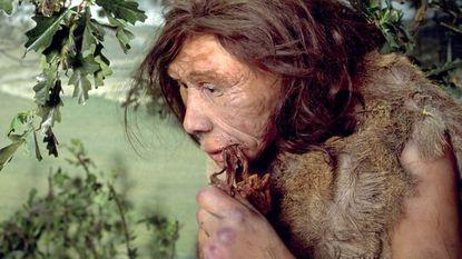 """""""Neanderthalers maakten op slimme wijze vuur"""""""