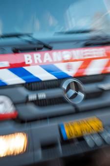 Twaalf brandweerwagens naar Amerongen voor natuurbrand