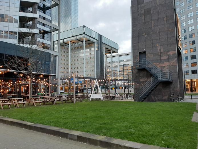 Op donderdag 26 maart wordt een nazaat van de kastanjeboom waarop Anne Frank uitkeek vanuit het achterhuis op dit grasveldje aan het Weena geplant.