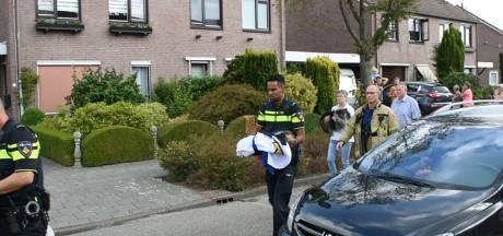 Hondjes gered bij brand in slaapkamer in Driel