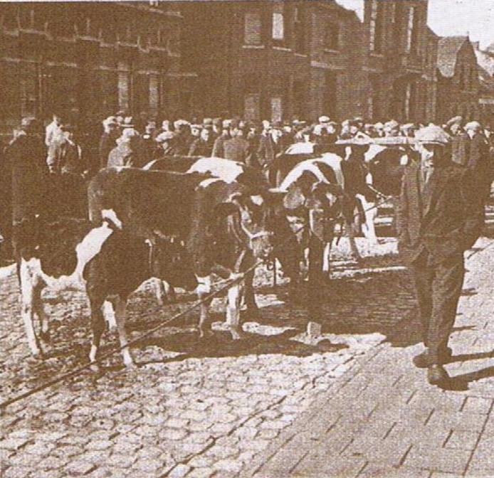 Een foto van de jaarmarkt in Sint Jansteen uit de 'oude doos'.