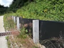 Al bijna 2 ton uitgegeven aan tunneltjes: toch weer 55 zandhagedissen gesneuveld op fietspad in Groesbeek