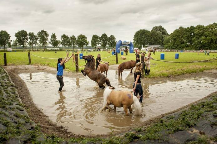 De waterbak is een van de nieuwe elementen van het vernieuwde hippische park van de Landelijke Rijvereniging en Ponyclub Prinses Irene in Zevenbergen. foto edwin wiekens/pix4profs