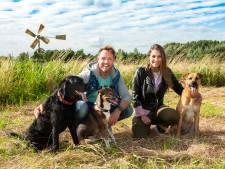 Hond Soof doodziek na eten drugsafval, baasje Floris (37) slaat alarm: 'Ze was knetterstoned, niet bij zinnen'