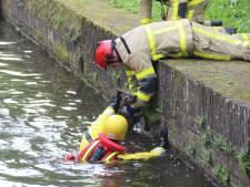 Brandweer redt ree van verdrinkingsdood