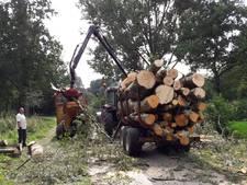 Nieuwegein kapt 122 bomen in park Oudegein