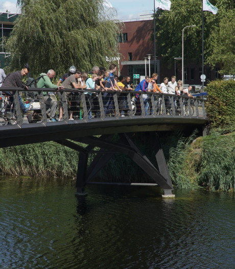 Hondje (16) overlijdt door val in Deventer gracht