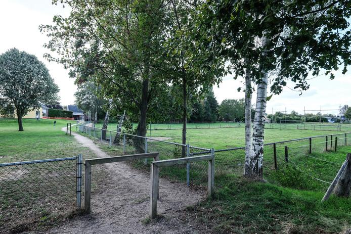 Op dit veldje in Halle mogen de kinderen van Dorpsschool weer voetballen.