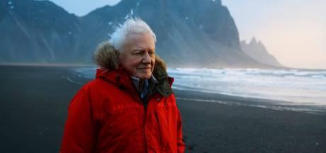 Nieuwe film David Attenborough eind september in bioscoop